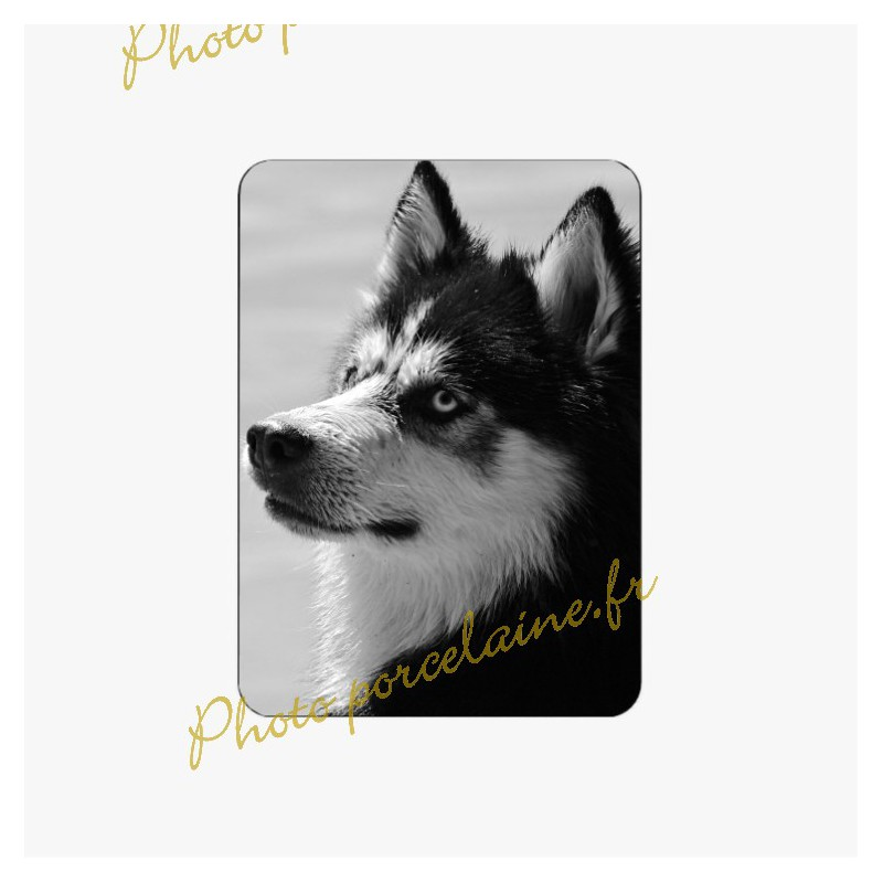 Photo porcelaine rectangle - Médaillon photo noir et blanc Chien