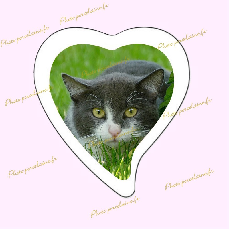 Photo porcelaine grand coeur bordure blanche - Médaillon photo couleur Chats