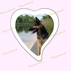 Photo porcelaine grand coeur bordure blanche - Médaillon photo couleur Chien