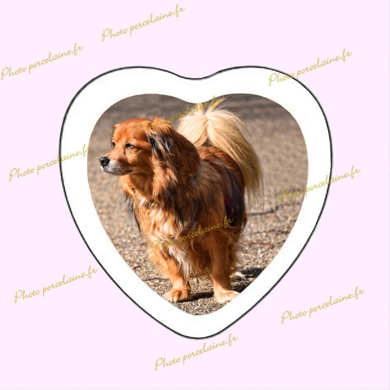 Photo porcelaine coeur bordure blanche - Médaillon photo couleur Chien