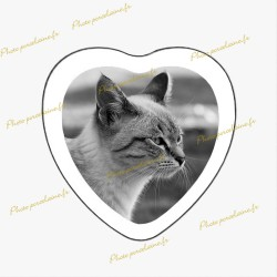 Photo porcelaine coeur bordure blanche - Médaillon photo noir et blanc Chats
