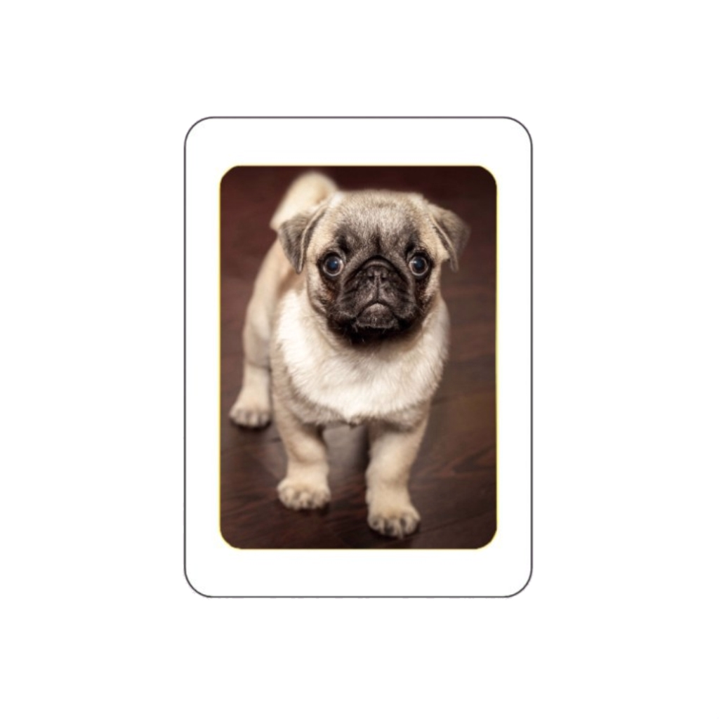 Médaillon photo porcelaine couleur MONTCEAUX LES PROVINS 77151